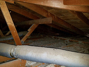 Attic Cleaning and Insulation